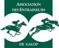Logo Association des entraîneurs au galop (AEDG)