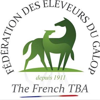 Logo Fédération des Eleveurs du Galop