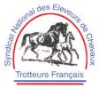 Logo Syndicat national des eleveurs de chevaux trotteurs français (SNECTF)