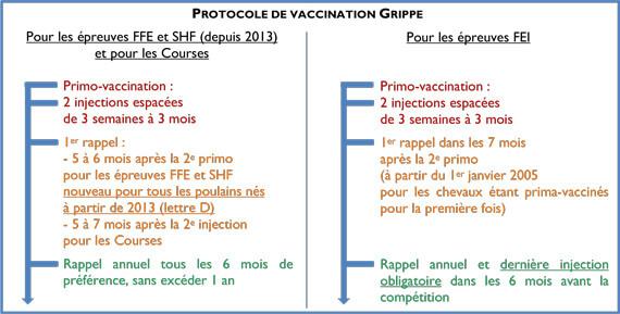 tableau protocole vaccination grippe