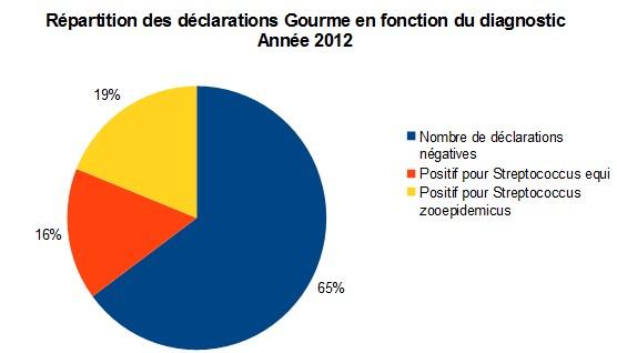 Bilan sous-réseau gourme 2012 - RESPE