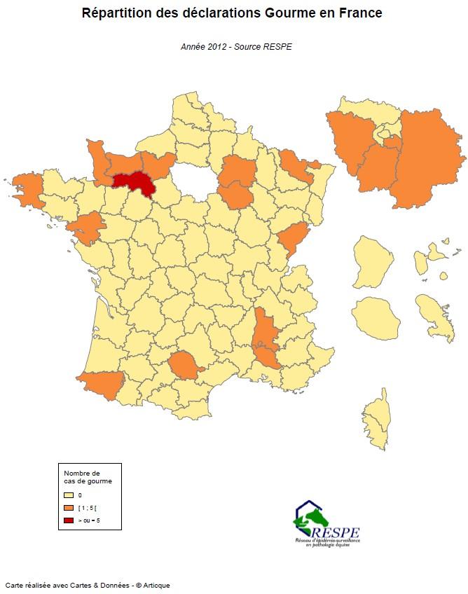 Bilan sous-réseau 2012 carte gourme - RESPE