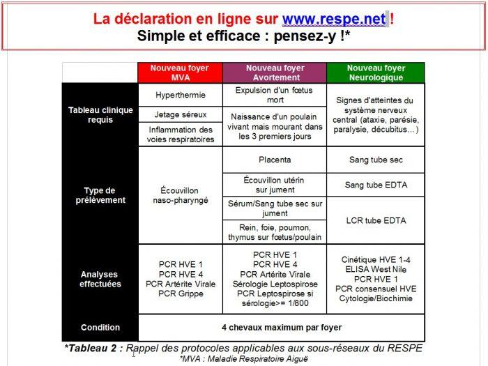 Protocoles applicables aux sous-reseaux RESPE