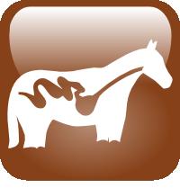 logo cheval - RESPE