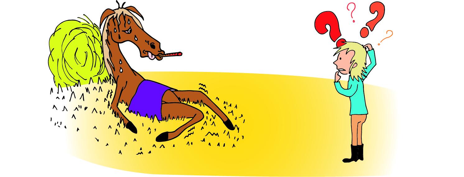 Les plantes toxiques pour les chevaux: à nous de les connaître pour leur éviter l'intoxication!