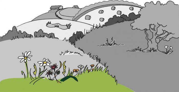 Talus et bords de haies: quelles sont les principales plantes toxiques pour les chevauxqu'il est possible d'y rencontrer?