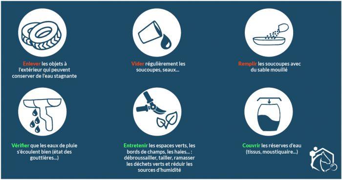Les moustiques : quelles mesures de prévention pour limiter leur développement ? Les mesures permettant de limiter les populations de moustiques concernent les larves et les adultes
