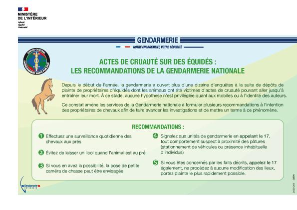 Actes de cruauté envers les équidés: le RESPE met à disposition des vétérinaires et des gendarmes les outils nécessaires pour faciliter les déclarations