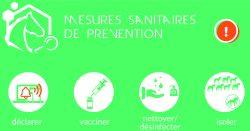 La cellule de crise du RESPE s'est réunie le 01 mars dans le cadre des foyers d'herpèsvirose de type 1 (HVE1 – rhinopneumonie) confirmés en Espagne à Valence, sur le site du Valencia Spring Jumping Tour et dans plusieurs départements en France en lien épidémiologique avec le foyer espagnol.