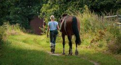 cheval chemin femme détenteur